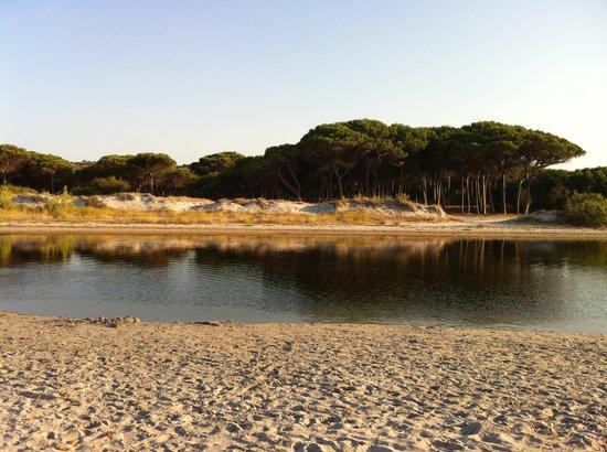 Selema Camping : alle spalle della spiaggia