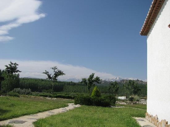 Cuevas Hammam Abuelo Jose: jardin