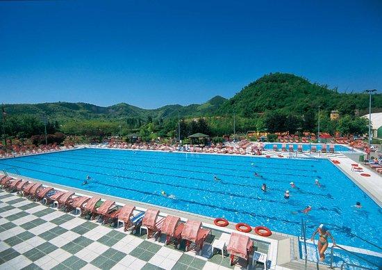 Petrarca Hotel Terme: piscina olimpionica