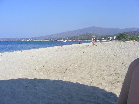 Astir Notos Hotel: The Beach at Potos