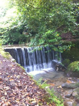 The Waterwheel Inn: waterfall at end of the garden x