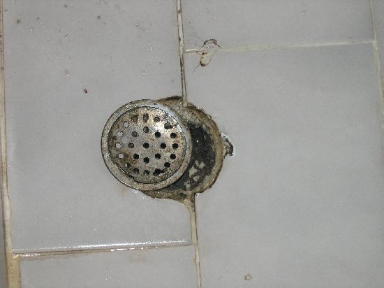 فاسيليكي باي هوتل: shower