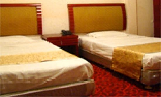 Hotel Montparnasse : Chambre twin