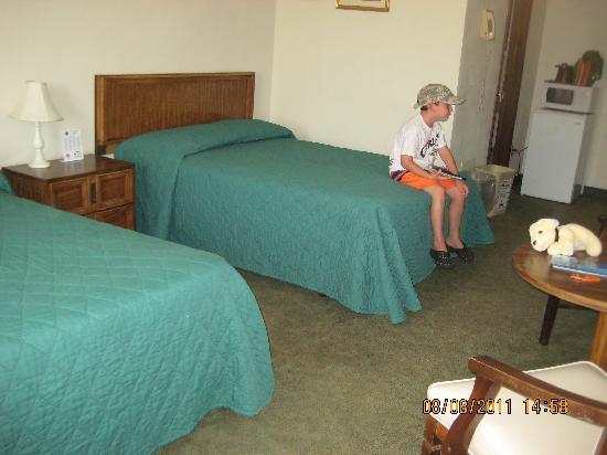 Sunflower Motel: Deluxe Motel Room