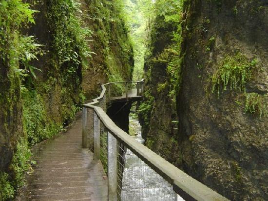 Sainte-Engrace, Francia: les passerelles qui longent la paroi en bas la rivière