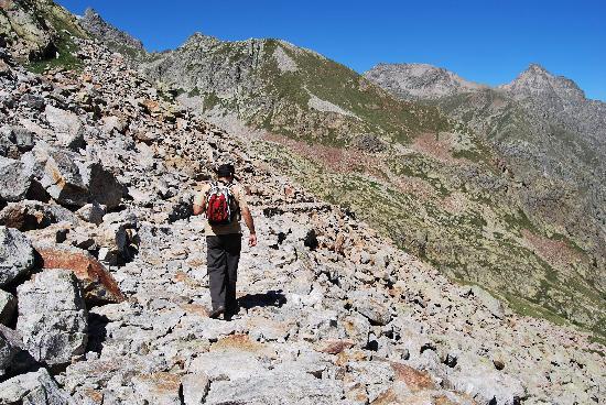 Rifugio Questa : carrareccia alpina