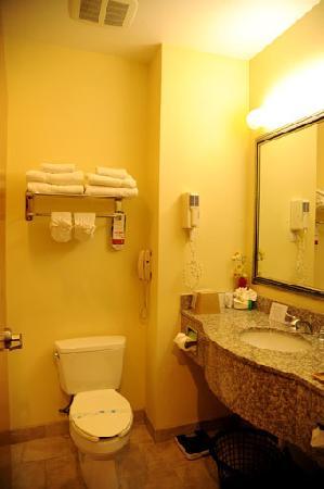 Super 8 by Wyndham Austin/Airport North: Toilet