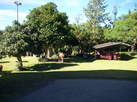 Lembang Asri: Hotel area 1