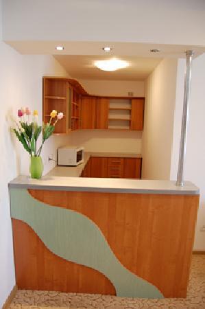 Camenca, มอลโดวา: Кухня в номере люкс