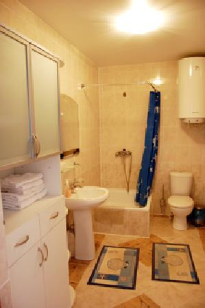 Camenca, มอลโดวา: Туалет и душевая комната