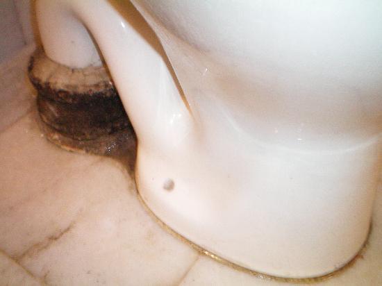 Hotel Clark International: il bagno -particolare del WC-