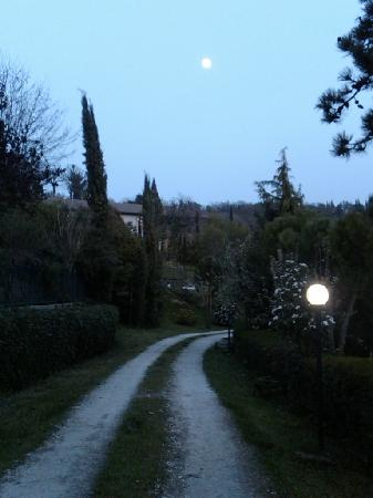 Agriturismo Buccia Nera : evening stroll using the moonlight.  so peaceful!