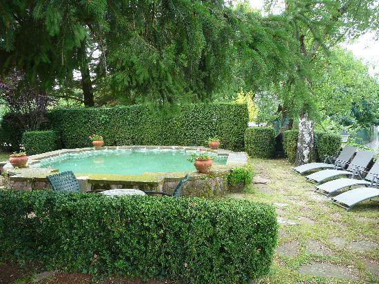 """Xalet la Coromina: Jardín y """"piscina"""""""