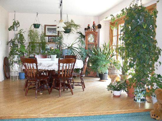Mountainview Bed and Breakfast: Our dining room