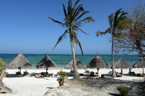 Flamingo Villas Club: la spiggia di mayungu restaurant