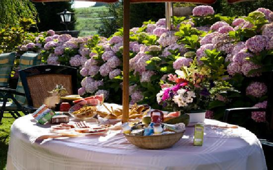Hosteria Los Sauces: Desayuno en el jardín de hortensias