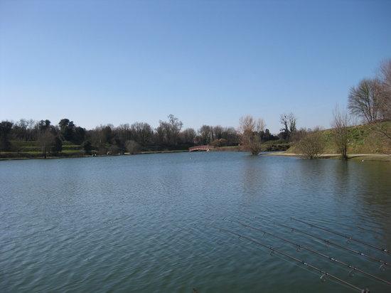 "Lac de Trizay, lieu de rêve pour les amateurs de pêche ""No Kill"""