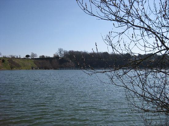 Lac de Trizay, au pied du Jardin de Compostelle