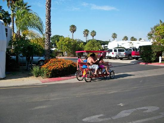 Newport Dunes Waterfront Resort : Renting a Bike