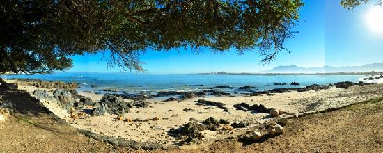 Gordon's Bay, South Africa: Milkwood Beah