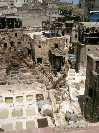Fez, Marrocos: tintoreros