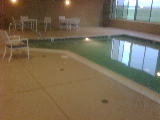 Hampton Inn Evansville: Indoor swimming pool in hotel