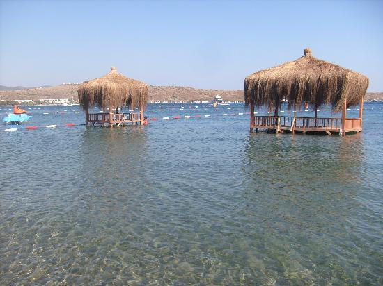 Ayaz Aqua : Beach which is only 2 mins from hotel