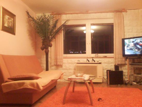 """Apartmani Vila Selin: apartman """"EXELENT"""""""