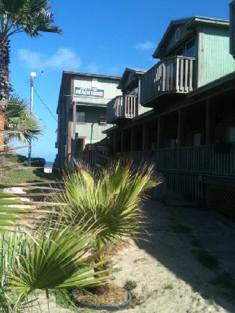 The Beach Lodge: Beach Lodge