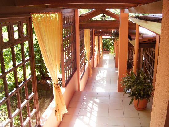 Orchid Tree: hallway