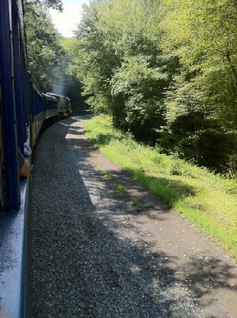 Lehigh Gorge Scenic Railway: nice wooded areas