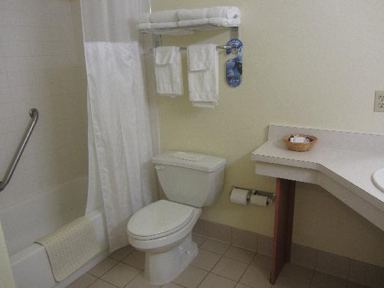 BEST WESTERN Rose Quartz Inn: Bathroom