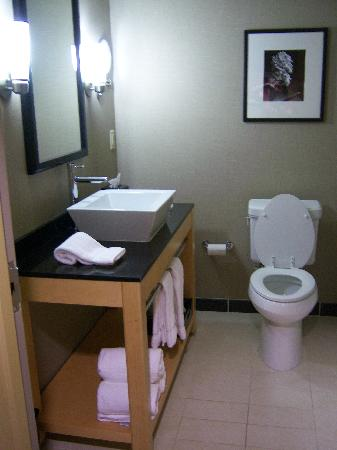 Cambria hotel & suites Raleigh-Durham Airport: Bathroom