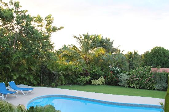 Residencial Casa Linda: View in our villa's backyard at Casa Linda
