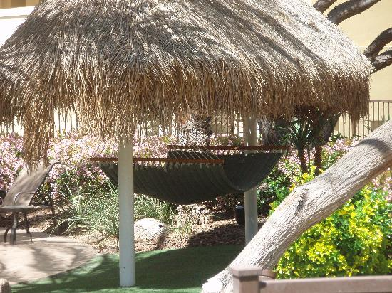 Cancun Resort: One of the hammocks
