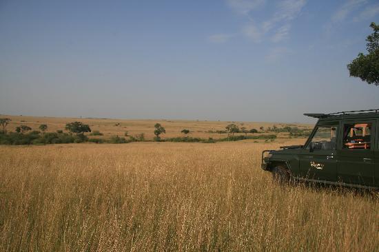 Rekero Camp, Asilia Africa: Comfortable Jeeps