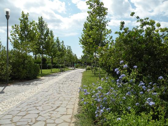 Torreserena Village: I vialetti del villaggio