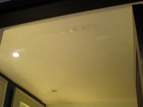 Leak in bathroom picture of hard rock hotel casino for Leaked bathroom photos