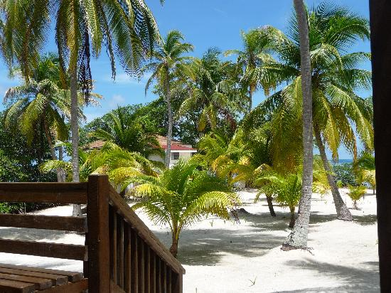 Pelican Beach - Dangriga: View from the main lodge