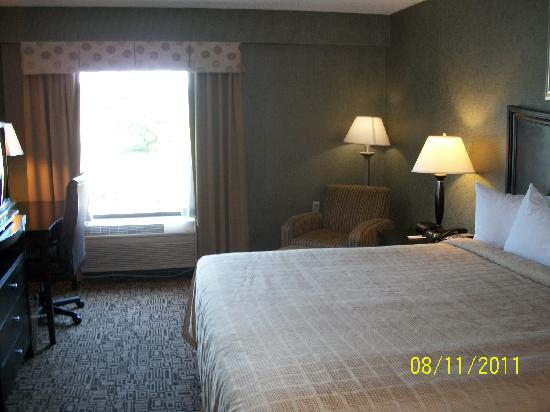 Quality Inn Troutville : Newer, interior room.