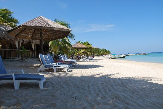 Paradise Beach Hotel: spiaggia davanti al Paradise