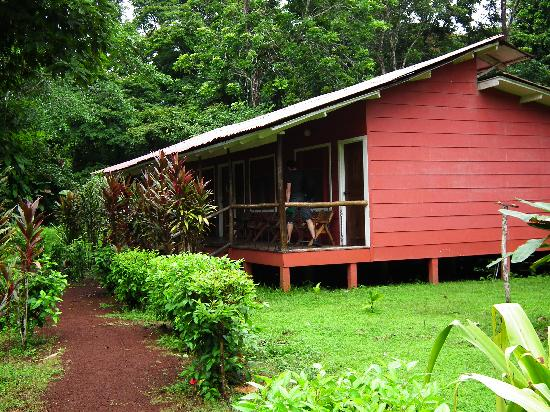 Samoa Lodge & Resort Tortuguero: Cabine deluxe