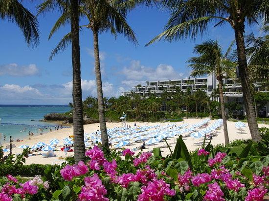 Hotel Moon Beach: hotel moonbeach