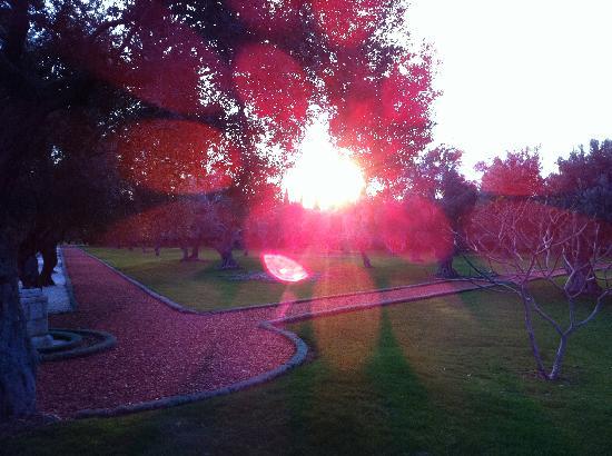 Abboud Tours: Bahai Gardens Akko