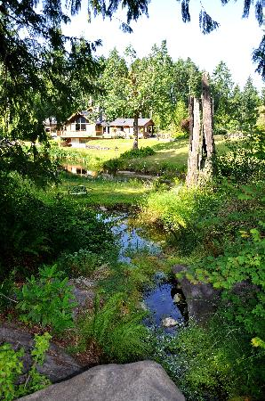 A Hidden Haven Bed and Breakfast: Beautiful Grounds