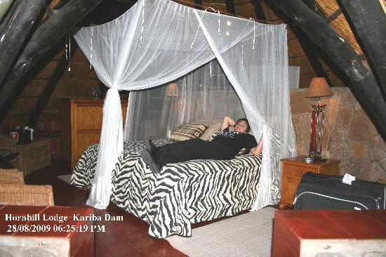 Hornbill Lodge: The room in the Chalet