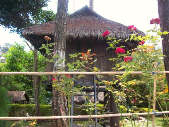 Pine Breeze Cottages : Igorot Huts