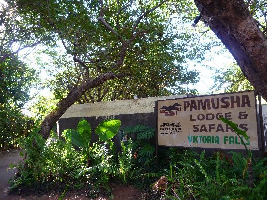 帕穆沙民宿照片