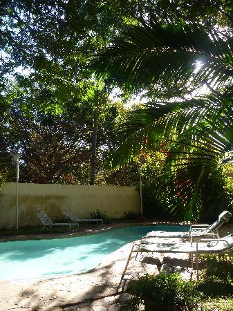 Pamusha Lodge: プールもご自由に。