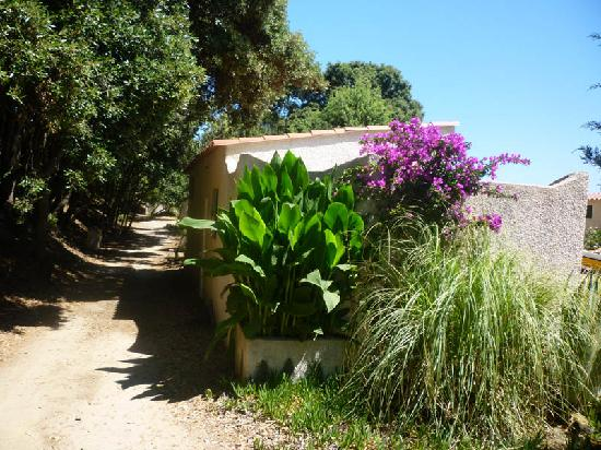 Riva Bella Naturiste Camping: Type 1 bungalow